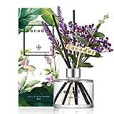 [Cocod'or/Little Forest] Reed Diffuser/Lavanda/diffusore di fragranza per ambienti/con fiori veri preservati e artificial Lavanda / 200ml