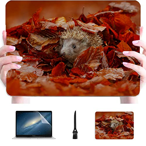Macbook Pro 2017 Cover Cute Fun Small Young Hedgehog Plastic Hard Shell Compatible Mac Air 13' Pro 13'/16' Macbook Pro A1708 Case Protective Cover For Macbook 2016-2020 Version