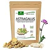 Cápsulas de Astrágalo (112 mg de polisacáridos y 0,8 mg de glucósidos) Tragant Tragacantha Membranaceus polvo de raíz - producto vegetal de calidad (1x90 cápsulas)