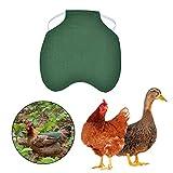 Hühnersattel Geflügel Henne Sattel Schürze Federschutzhalter Chicken Duck Wings Rückenprotektor...
