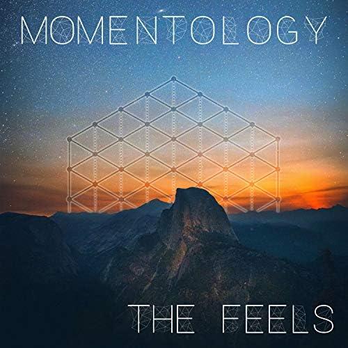 Momentology