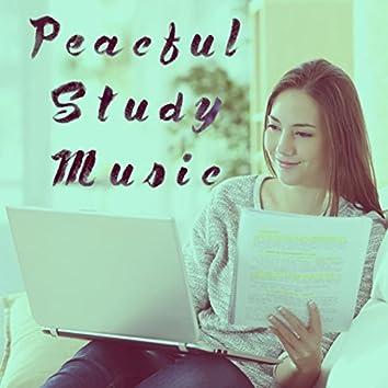 Peacful Study Music
