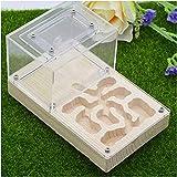 HTDHS Ant Farm Nest Worm Lore Ant Castle Gypsum Box Jaulas de Pet Educativo y Aprendizaje Kit de Ciencia Juguete para Niños Adultos (Color: B, Tamaño: 16x10x10cm) (Color : C, Size : 16x10x10cm)