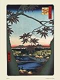 Hiroshige Japanisches Poster Kunstdruck The Maple Treesat