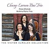 Piano Trio No. 2 in C Major, Op. 87: II. Andante con moto