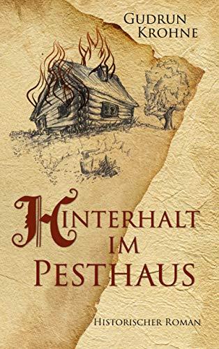 Hinterhalt im Pesthaus: Historischer Roman (Begine Hildegard 4)