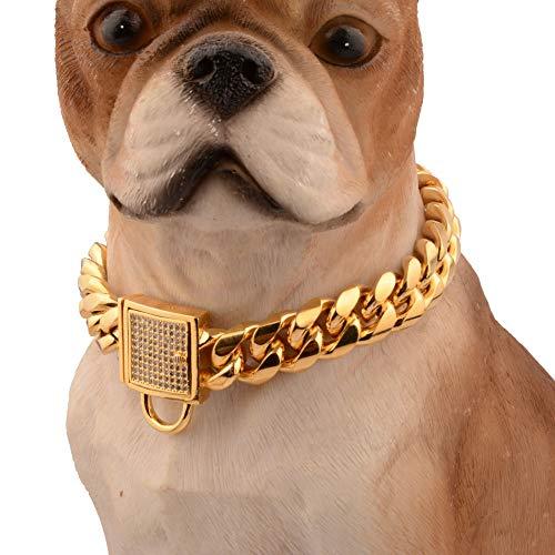 LYXL Collar Perro Oro Collar de Gargantilla de Cadena de Enlace de Tono Dorado de Acero Inoxidable para Perro pequeño y Mediano 14 Pulgadas o 35 cm