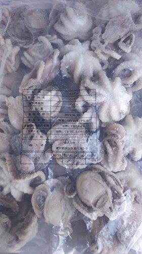 ベトナム 生イイダコ 1kg ( kg26-40個 ) いいだこ 飯蛸 冷凍 業務用