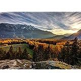 カナダのウッズ山地1000個の木製パズル、大きなパズル、大人のパズル、減圧レジャーと環境保護のパズル、最高のホリデーギフト [並行輸入品]