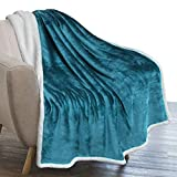 PAVILIA Plush Sherpa Fleece Throw Blanket Teal Blue | Soft, Warm, Fuzzy Turquoise Throw for Couch Sofa | Solid Reversible Cozy Microfiber Fluffy Blanket, 50x60