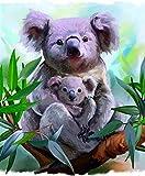Pintar por Numeros DIY Cuadro al óleo con números para Kit de Pintura al óleo Digital para Adultos y niños de Lienzo decoración para el hogar Acuarela Animal Koala Madre e Hijo 40x50cm Sin Marco