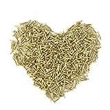 Omyzan 500PCS Cabeza redonda de oro pequeños clavos de madera DIY Cajas decorativas Accesorios 1 * 10mm