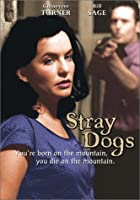 Stray Dogs [DVD] [Import]