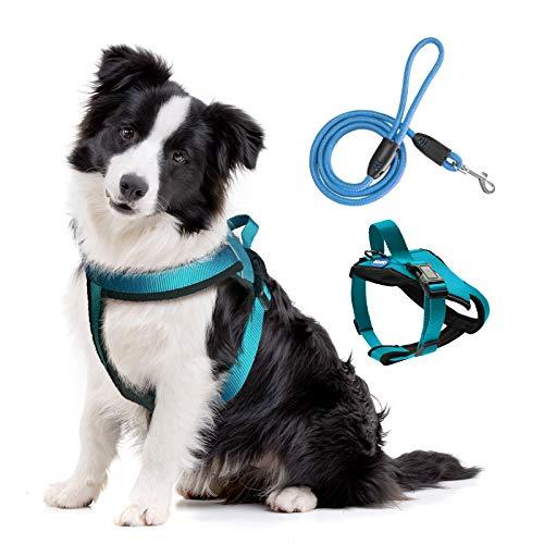 BRAVO HOME Arnés Pecho Antitirones para Perros, Arnés Pecho Antitirones con Correa Ajustable para Adiestramiento de Mascota para Perros Pequeños, Medianos y Grandes (M, Azul Claro)