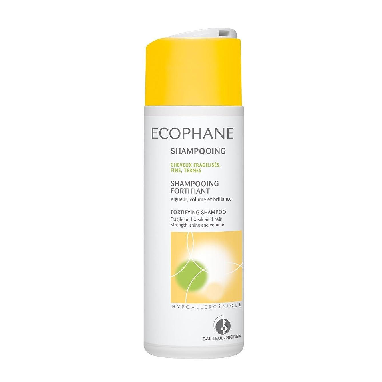 美的アルカイックお手伝いさんBiorga Ecophane Fortifying Shampoo 200ml [並行輸入品]