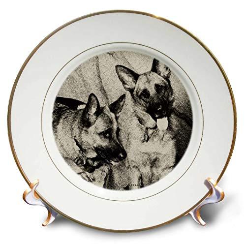 3dRose Milas Art Dogs - Pastor Alemão - Placas (cp_4624), 8 inch Porcelain Plate, 1