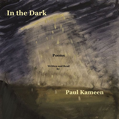 In the Dark: Poems audiobook cover art