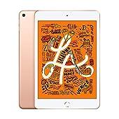 2019 iPad mini Wi-Fi 64GB - ゴールド