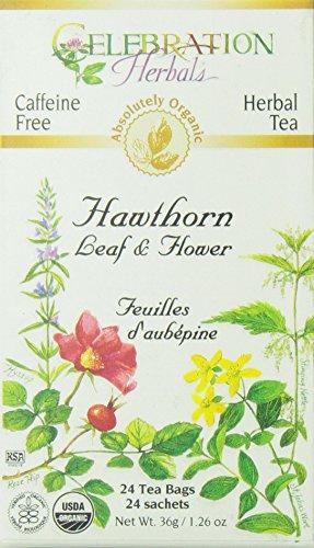 CELEBRATION HERBALS Hawthorn Leaf & Flower Organic 24 Bag, 0.02 Pound
