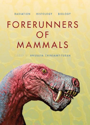 Forerunners of Mammals: Radiation - Histology - Biology (Life of the Past)