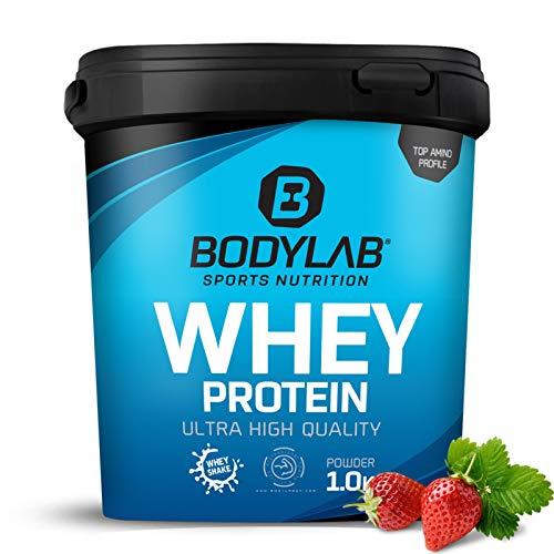 Protein-Pulver Bodylab24 Whey Protein Erdbeere 1kg / Protein-Shake für Kraftsport & Fitness / Whey-Pulver kann den Muskelaufbau unterstützen / Hochwertiges Eiweiss-Pulver mit 80% Eiweiß / Aspartamfrei