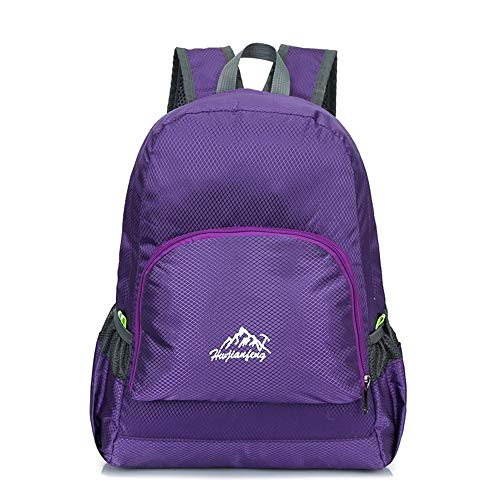 KNJF Waterproof Cycling Backpack Cycling Backpack Ultra Lightweight Packable Backpack for Hiking Cycling Running Camping Skiing Outdoor Activities 20L (Color : Purple, Size : 40 * 26 * 15cm)