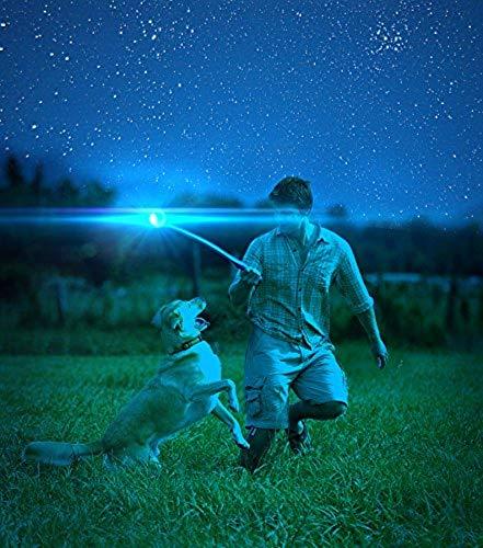 Chuckit! MAX Glow Bola de Perro: Amazon.es: Productos para mascotas