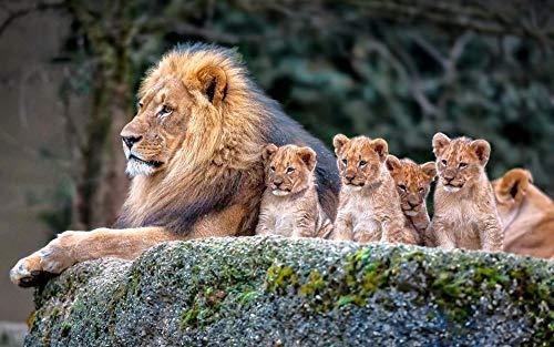 UIUY León Animal bebé Cachorro de león, 1000 Piezas,para Adultos,Máxima Calidad de impresión,Juguetes clásicos Rompecabezas, DIY Rompecabezas para Adultos