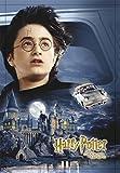 Póster Harry Potter y la Cámara Secreta