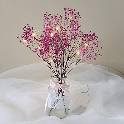 Justdolife 1 Bonch Preserved Flower Babysbreath droogbloem met glazen vaas & Fairy Light
