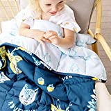 Kids Weighted Blanket 5 Pounds - Just Like A Hug from Mom   Calming Blanket for Toddler   Adventure Blue Comforter for Children
