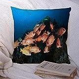 Fundas de almohada decorativas para sofá cama Sofá Azul Submarino Colorido Arrecife de coral Peces tropicales Animales del océano Vida silvestre Egipto Naturaleza Acuario rojo Funda de cojín suave