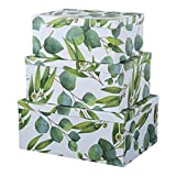 Soul & Lane Decorative Storage Cardboard Boxes with Lids   Sprigs of Green - Set of 3   Botanical Paperboard Nesting Boxes