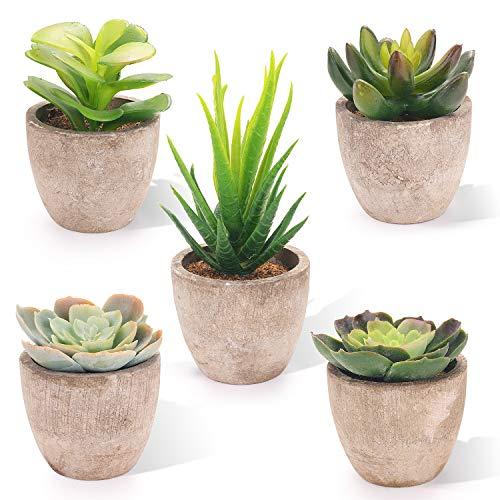 EKKONG Künstliche Sukkulenten Pflanzen Künstliche Blumen Bonsai Kunstpflanze mit grauen Topf Mini Kunststoff Fälschung Grünes Gras, für Hochzeit/Büro/Zuhause Dekoration (5 pcs)