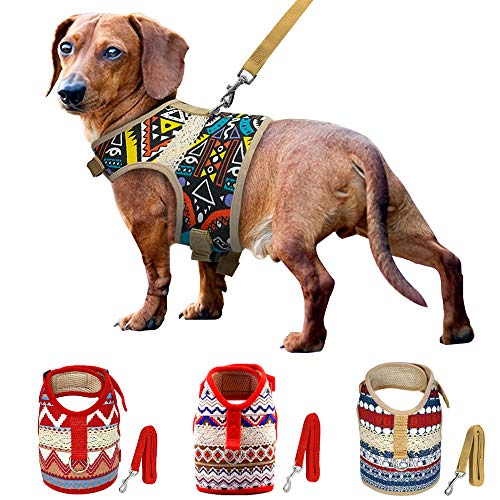 Muttitude Dog Harness & Leash Set for Small Breeds (Large, Pueblo)