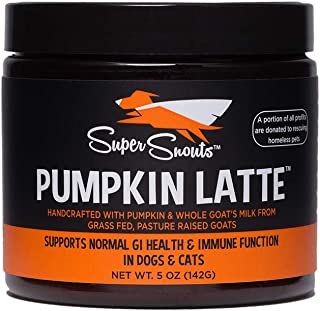 Diggin' Your Dog Super Snouts Pumpkin Latte