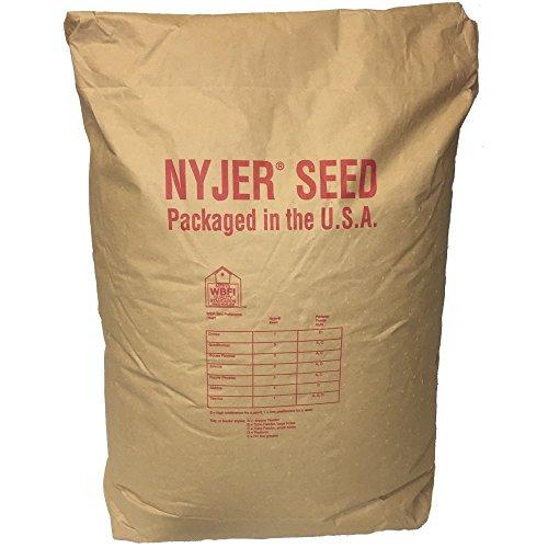 Wagner's 62052 Nyjer Seed Wild Bird Food, 50-Pound Bag
