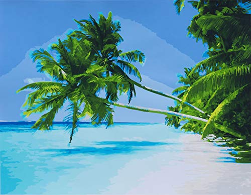 YXQSED DIY Oil Painting, Paint by Number Kit for Adult Home Decor Wall Pic Value Gift Tropical Beach 16x20 Inch