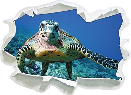 Schildkröte über Korallenriff, Papier 3D-Wandsticker Format: 92x67 cm Wanddekoration 3D-Wandaufkleber Wandtattoo