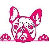 NBFU DECALS Funny French Bulldog Peeking Paws Cute Tongue (Pink) (Set of 2) Premium Waterproof Vinyl Decal Stickers Laptop Phone Accessory Helmet Car Window Bumper Mug Tuber Cup Door Wall Decoration
