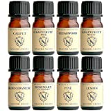 NAGOMI AROMA(ナゴミアロマ) NAGOMI AROMA エッセンシャルオイル お試しセット【AEAJ表示基準適合認定精油】(ルームクリーンアロマ(お部屋の除菌)) ルームクリーン(お部屋の除菌) 1セット