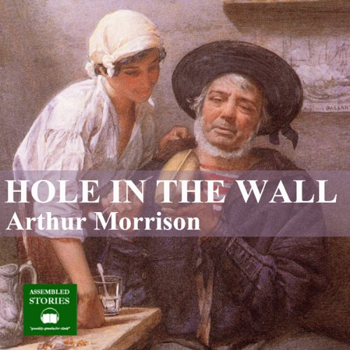 The Hole in the Wall audiobook cover art