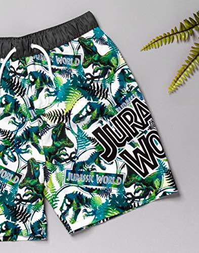 Jurassic World Swim Shorts for Boys | Kids Tyrannosaurus T Rex Dinosaur Swimming Trunks Pants | Children's Green Swimwear 11-12 Years