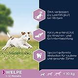 Eukanuba Puppy Small Breed Trockenfutter (für Welpen kleiner Hunderassen, Premiumnahrung mit Huhn), 3 kg Beutel - 5