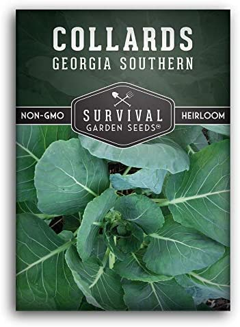 Survival Garden Seeds Georgia Southern Collards Seed for Planting Packet with Instructions to product image