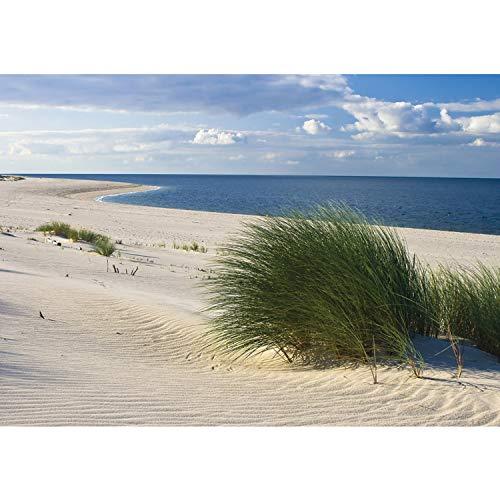 Vlies Fototapete PREMIUM PLUS Wand Foto Tapete Wand Bild Vliestapete - Strand Meer Dünen Gras Wolken Ostsee - no. 1933, Größe:368x254cm Vlies