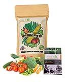 NatureZ Edge Garden Seeds Vegetable Variety Seed Pack, 11 Varieties of Heirloom Vegetable Gardening Seeds for Planting, 4800+ Seeds for Gardening Vegetables,Non-GMO