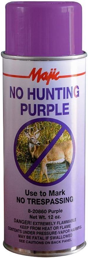 Majic Paints 8-20860-8 Ranking TOP5 No Hunting N Aerosol Paint Purple Spring new work Spray