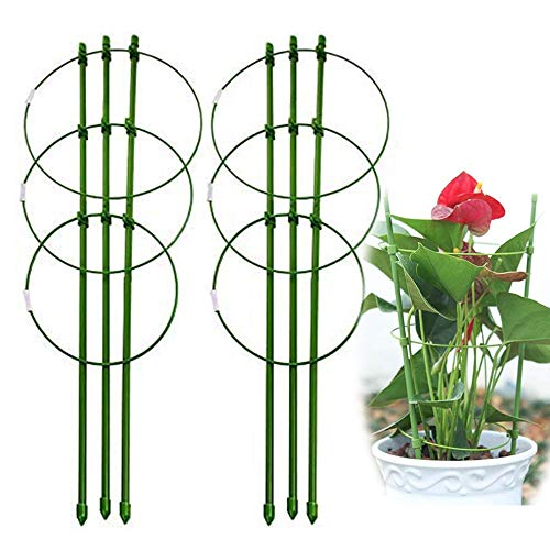 Reusable Folding Garden Plant Support Metal Rings Large Size Garden Trellis Flower stainless Steel Support Climbing Vegtables&Flowers&Fruit Grow Cage Stakes with 3 Adjustable Rings 60cm/24in(2 Pack)