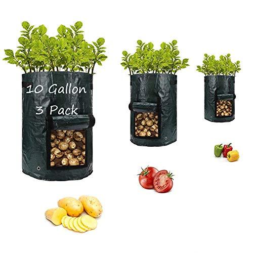 PotatoGrowBagsGarden Vegetable Planter with HandlesampAccess Flap for VegetablesTomatoCarrot OnionFruitsPotatoesGrowingContainersVentilated Plants Planting Bag 3 Pack10 Gallon